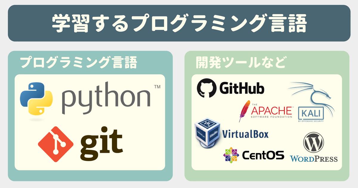 【Udemy感想】Python3による情報セキュリティマネジメント入門で学べるプログラミング言語